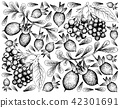 Elderberry and Diospyros Lycioides Fruits 42301691