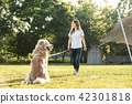 젊은여자, 개, 강아지, 애완동물, 골든 리트리버 42301818