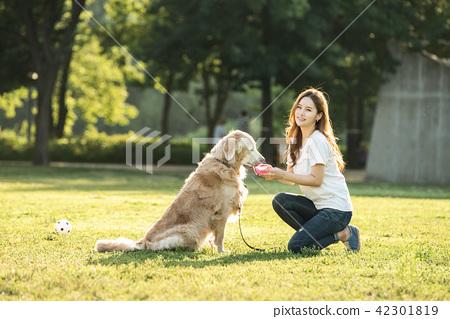 젊은여자, 개, 강아지, 애완동물, 골든 리트리버 42301819