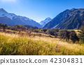 Aoraki Mount Cook, New Zealand 42304831
