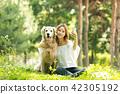 젊은여자, 개, 강아지, 애완동물, 골든 리트리버 42305192