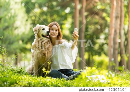 젊은여자, 개, 강아지, 애완동물, 골든 리트리버 42305194