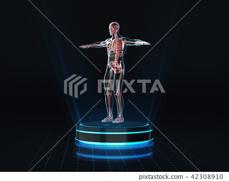 Hologram Man anatomy and skeleton on pedestal.  42308910