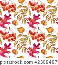 autumn fall foliage 42309497