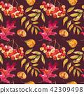autumn fall foliage 42309498
