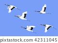 vector crane bird 42311045