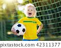 soccer, football, ball 42311377