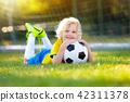 soccer, football, ball 42311378