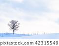 landscape, scenery, scenic 42315549
