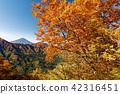 mountain, fuji, mt 42316451