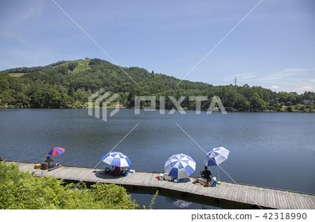 hijirikogen, nagano prefecture, nagano 42318990