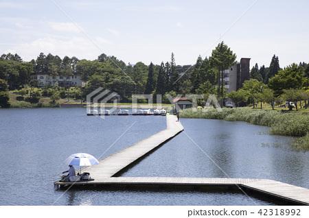 hijirikogen, nagano prefecture, nagano 42318992