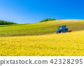 """""""Hokkaido"""" Biei · Rural landscape and farming car 42328295"""