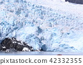 冰川 巡游 阿拉斯加 42332355