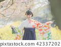 Sakura 42337202