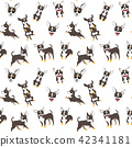chihuahuai n action,seamless pattern 42341181