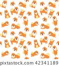 pomeranian,seamless pattern 42341189