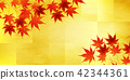 maple, yellow, leafe 42344361