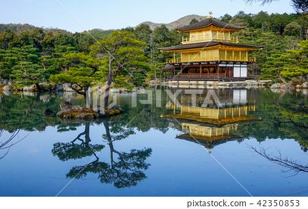 Kinkaku-ji Temple in Kyoto, Japan 42350853