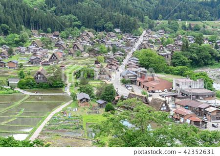 Japan Shirakawago, Hida, Wuyi Mountain, Hezhang Village, Palmarium, Shirakawa, Shirakawa, Shirakawa 42352631