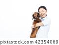 動物護士 42354069