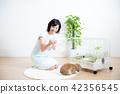 애완동물, 펫, 반려동물 42356545