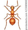 illustration of Cartoon ant 42368900