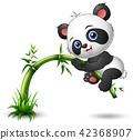illustration of Cute baby panda tree climbing 42368907