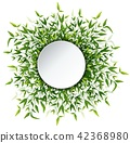 illustration of Bamboo leaves frame 42368980