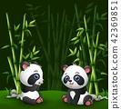 动物 竹子 竹 42369851
