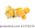 Cape gooseberry (physalis) isolated on white 42370235