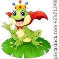 Frog prince cartoon on water lily leaf 42371248