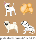 dog set vector 42372435