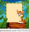 Tiger sitting on hollow log near the empty framed  42373333