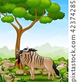Cartoon wildebeest mascot in the jungle 42374285