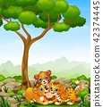Happy wild animal cartoon in the jungle 42374445
