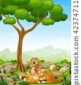 animal cheetah tree 42374711