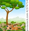 Boy lay down using binoculars with a leopard 42374714