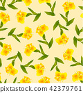 Yellow Canna lily on Ivory Beige Background 42379761