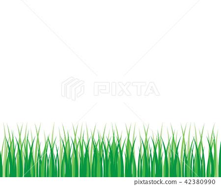 Vector green grass illustration 42380990