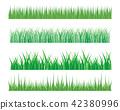 Vector green grass illustration 42380996