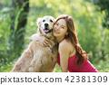 개, 강아지, 애완동물 42381309