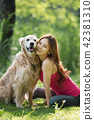 개, 강아지, 애완동물 42381310