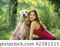 개, 강아지, 애완동물 42381315