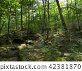 ป่าแห่ง Jukai 42381870