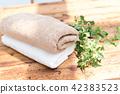 ผ้าเช็ดตัว,ซักผ้า,ซักรีด 42383523