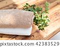 ผ้าเช็ดตัว,ต้นไม้ในบ้าน,ไม้ 42383529