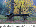 Old farm carriage under an autumn trees 42387734