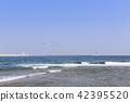 바다,삼척시,강원도 42395520