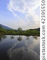 연못,통도사,양산시,경남 42395550